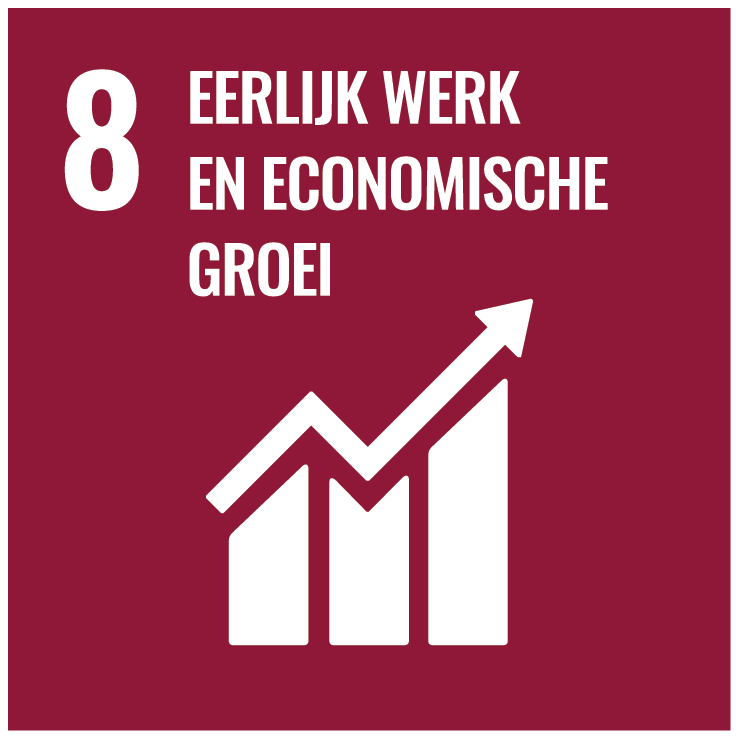 NL rbg SDG Goal 08