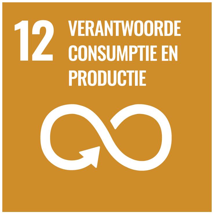 NL rbg SDG Goal 12